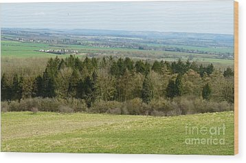 Green And Pleasant Land Wood Print by Julie Koretz