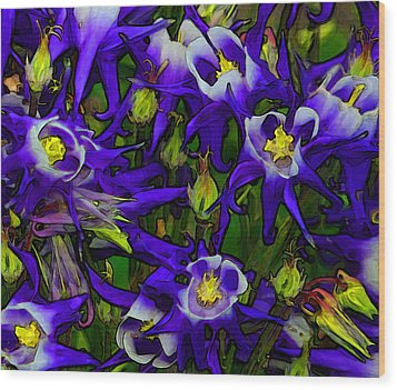 Green And Purple Burst Abstract Wood Print by James Hammen