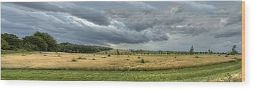 Green And Yellow Meadows At A Golfing Club In Kashubia Of Poland Wood Print by Julis Simo