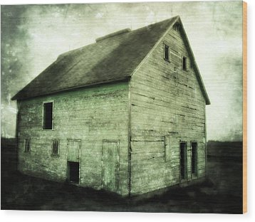 Green Barn Wood Print by Julie Hamilton