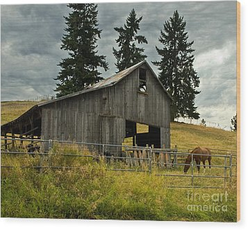 Green Bluff Horsebarn Wood Print by Chuck Flewelling