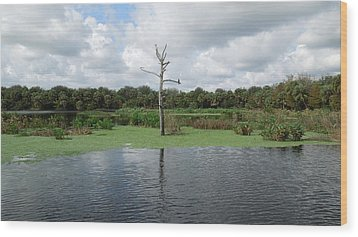 Wood Print featuring the photograph Green Cay Panorama by Ron Davidson
