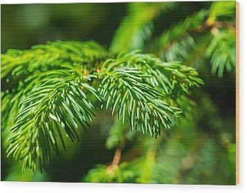 Green Christmas Tree 2 Wood Print