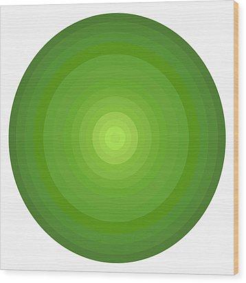 Green Circles Wood Print by Frank Tschakert