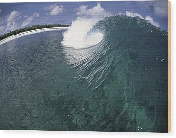 Green Curl Wood Print by Sean Davey