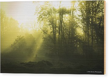 Wood Print featuring the photograph Green Dawn by Phil Abrams