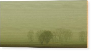 Wood Print featuring the photograph Green Day by Franziskus Pfleghart