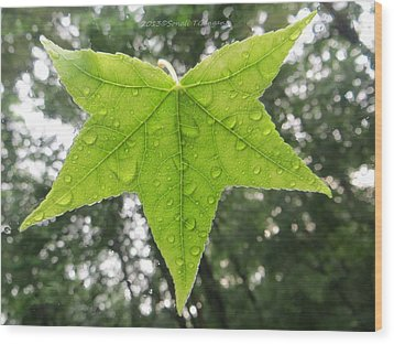 Green Droplets Wood Print by Sonali Gangane