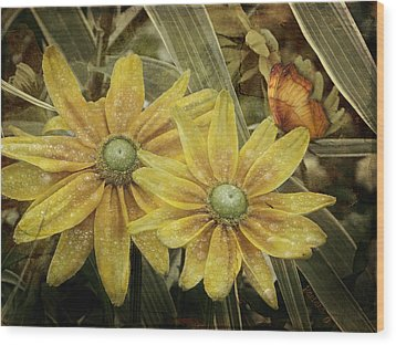 Wood Print featuring the photograph Green Eyed Susie by Barbara Orenya