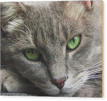 Wood Print featuring the photograph Green Eyes by Leigh Anne Meeks