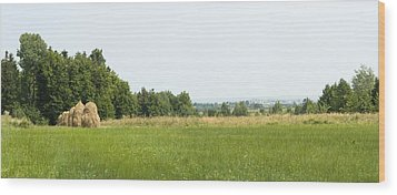 Green Field Panorama Wood Print by Vlad Baciu