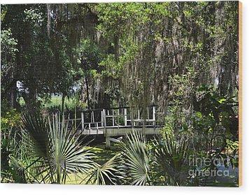 Green Gardens At Magnolia Plantation Wood Print