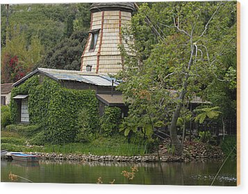 Wood Print featuring the photograph Green House by Ivete Basso Photography