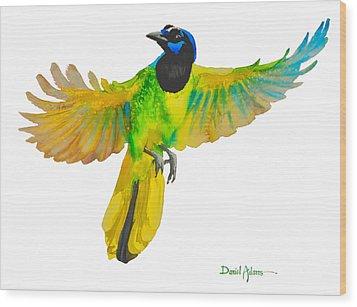 Da175 Green Jay By Daniel Adams Wood Print