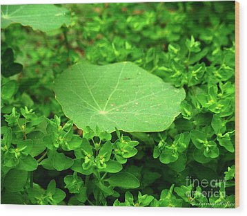 Green Wood Print by Karam Halim