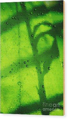 Green Leaf Through The Glass Wood Print by Lali Kacharava