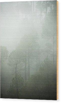 Green Mist Wood Print by Rajiv Chopra