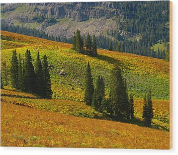 Green Mountain Trail Wood Print by Raymond Salani III