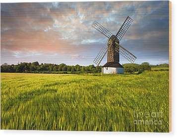 Green Ocean ''pitstone Windmill'' Wood Print by Radoslav Toth