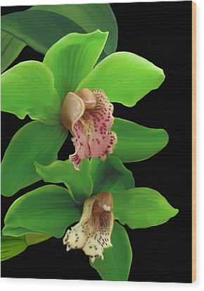 Green Orchids Wood Print