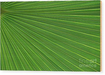 Green Palm Abstract Wood Print by Kathleen Struckle