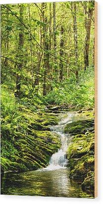 Green River No2 Wood Print by Weston Westmoreland