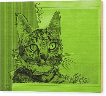Green Sanguine ... Abstract Cat Art Painting Wood Print by Amy Giacomelli
