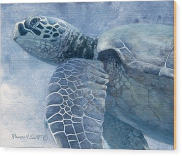 Green Sea Turtle Wood Print by Randall Scott