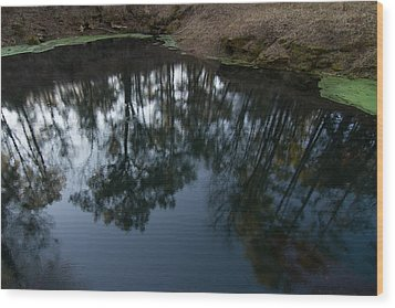 Wood Print featuring the photograph Green Sink Reflection by Paul Rebmann