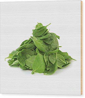 Green Spinach Wood Print by Elena Elisseeva