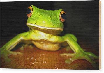 Green Tree Frog Wood Print by Laura Hiesinger