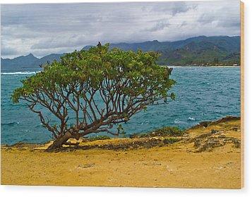 Green Tree Wood Print by Matt Radcliffe