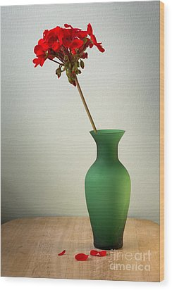 Green Vase Wood Print by Donald Davis
