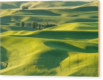 Green Velvet Wood Print