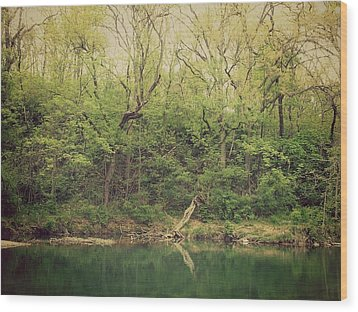 Green Waters  Wood Print by Kiara Reynolds