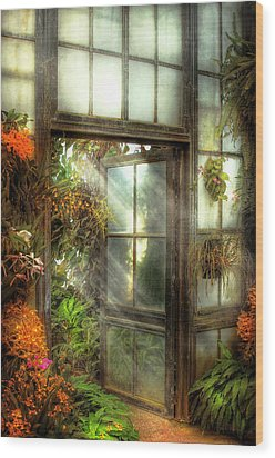 Greenhouse - The Door To Paradise Wood Print by Mike Savad