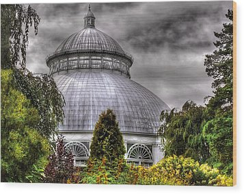 Greenhouse - The Observatory Wood Print by Mike Savad