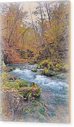 Greer Spring In Fall Wood Print by Marty Koch