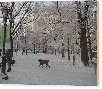 Greeting Friends In Central Park Wood Print