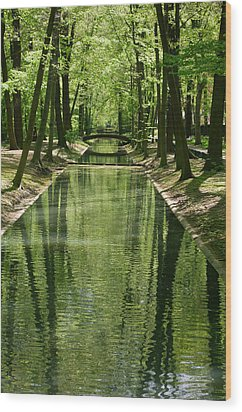 Gren Green Wood Print by Iryna Soltyska