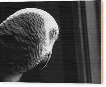 Grey 1 Wood Print by Paulina Szajek