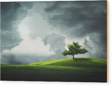 Grey Clouds Over Field With Tree Wood Print by Bess Hamiti