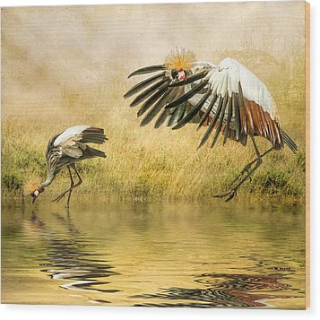 Wood Print featuring the photograph Grey Crowned Cranes by Brian Tarr