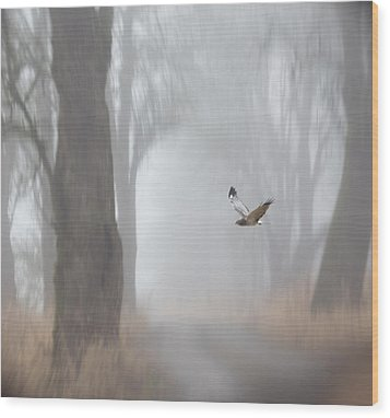 Grey Ghost Wood Print by Angie Vogel