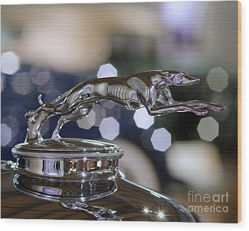 Grey Hound Hood Ornament Wood Print by JRP Photography
