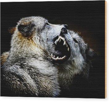 Grey Wolf Fight Wood Print