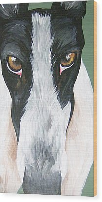 Greyhound Eyes Wood Print