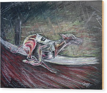 Greyhound Number Three Wood Print by Tom Conway