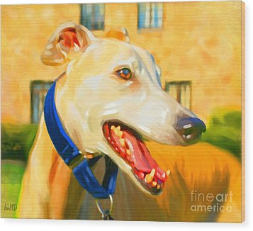 Greyhound Painting Wood Print by Iain McDonald