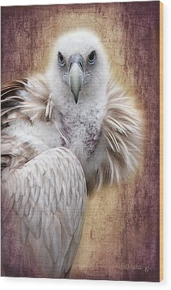 Griffon Vulture Wood Print by Barbara Orenya